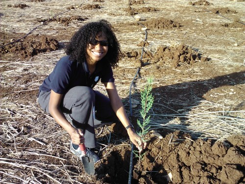 Planting a tree as part of Israel's reforestation effort. I named this one Ben Franklin.