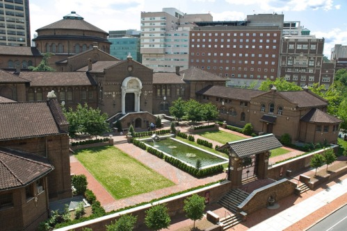 The Penn Museum's Warden Garden