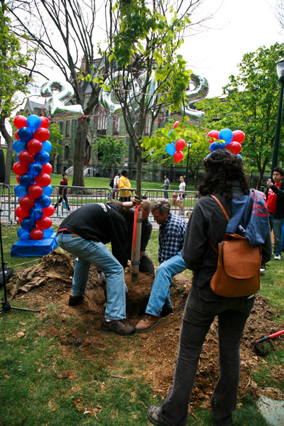 Class of 2012 Tree planting.