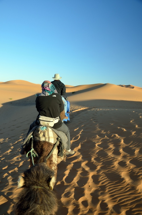 Penn alumni voyage across the desert on camels. Photo by Penn alumnus Murray Sherman, GR'69.