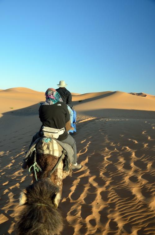 Penn alumni voyage across the desert on camels. Photo by Penn alumnus Murray Sherman, GR'69.