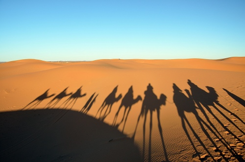 Camel passage. Photo by Penn alumnus Murray Sherman, GR'69.