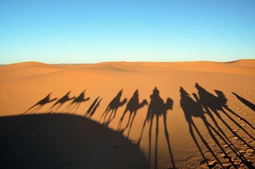 Camel passage. Photo by Penn alumnus Murray Sherman, GR'69.