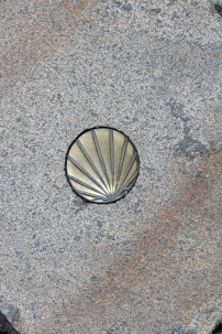 St. James' shell imbedded in stone pavement.
