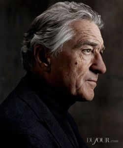This is a piece that Anthony DeCurtis wrote recently. It's a profile of Robert De Niro for Du Jour Magazine. http://www.dujour.com/2013-09/1555/robert-de-niro-the-family-interview-photos