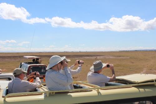 Spotting a herd of elephants in front of Mt. Kiliminjaro