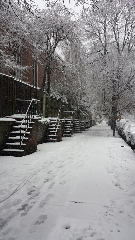 Snow on Spruce Street