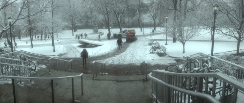 Snowy_College_Green (2)