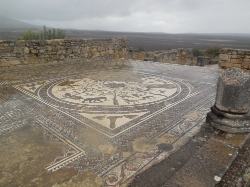 An example of the beautiful mosaics at Volubilis.
