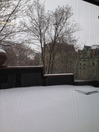 Snow falling as seen from my temporary office in the Sweeten Alumni House