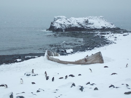 Somewhere on the Antarctic coast. Let's hope at least we will get home safe, it looks like someone else did not …