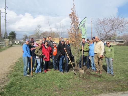 Planting trees in Utah.