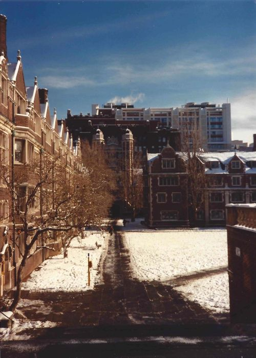 Lower Quad at the University of Pennsylvania in the snow, December, 1989
