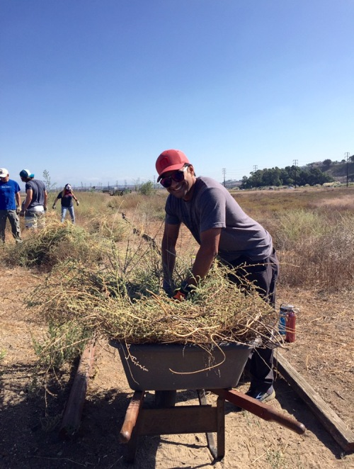 Penn Serves LA Restores Ballona Wetlands