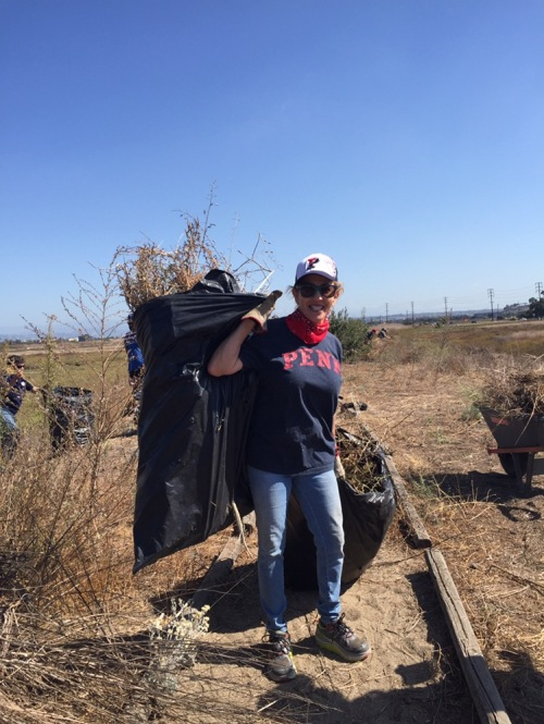 Jane Gutman, CW'73, helps to clear out invasive vegetation