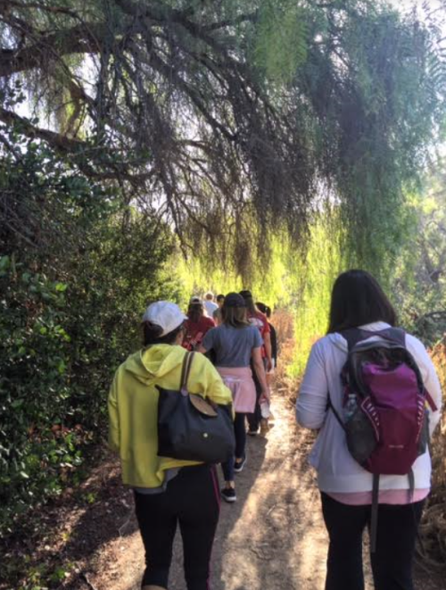 Penn Serves LA Tree People Los Angeles Penn Alumni volunteering