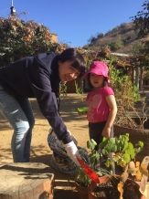 Penn Serves LA helps Treepeople at the Audobon Center Los Angeles