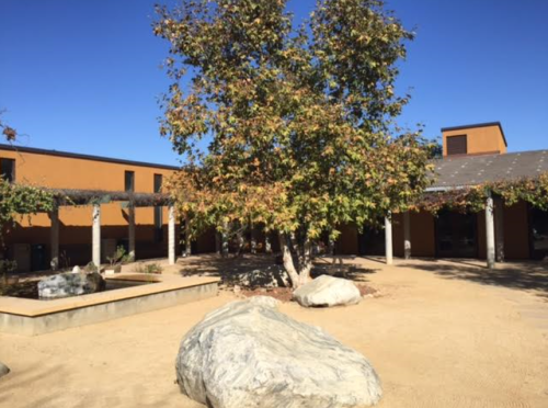 Courtyard at Audobon Center Los Angeles cleaned up by Penn Serves LA penn alumni volunteers
