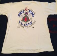 Penn Spring Fling 1993 t-shirt