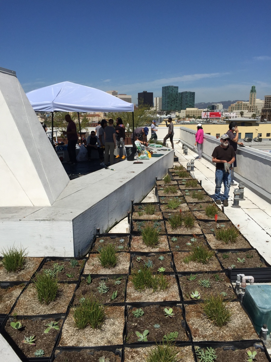 Penn Serves LA The Skid Row Housing Trust Los Angeles volunteering